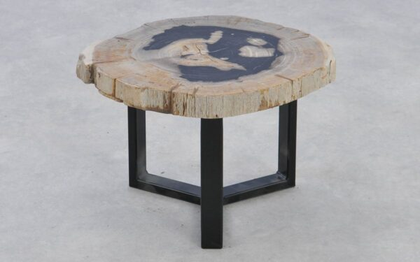 Couchtisch versteinertes Holz 37377