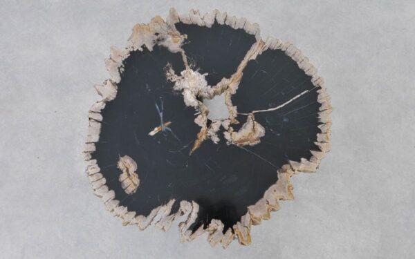 Couchtisch versteinertes Holz 37381