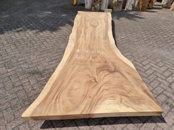 Baumstamm Tisch suar 26506