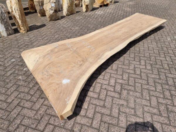 Baumstamm Tisch suar 26507