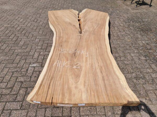 Baumstamm Tisch suar 26524
