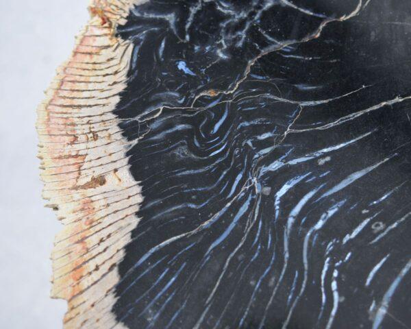 Mesa de centro madera petrificada 35206