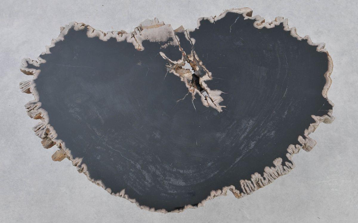 Mesa de centro madera petrificada 37175