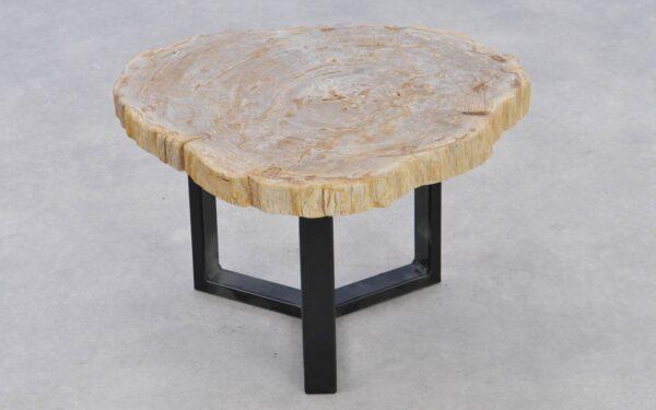 Mesa de centro madera petrificada 37203