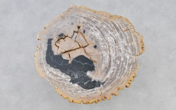 Mesa de centro madera petrificada 37205