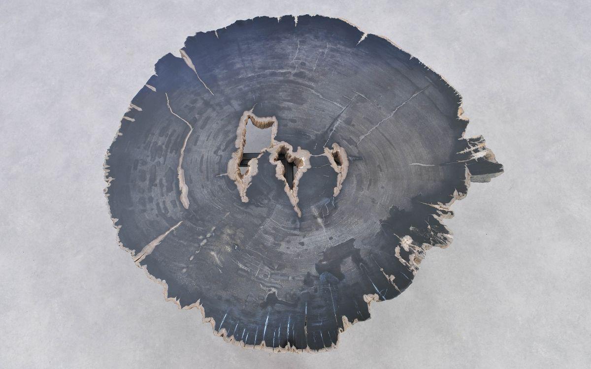 Mesa de centro madera petrificada 37220