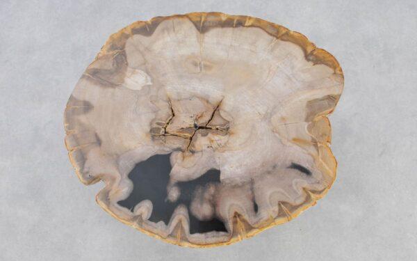 Mesa de centro madera petrificada 37238