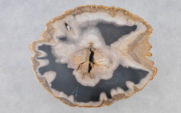 Mesa de centro madera petrificada 37244