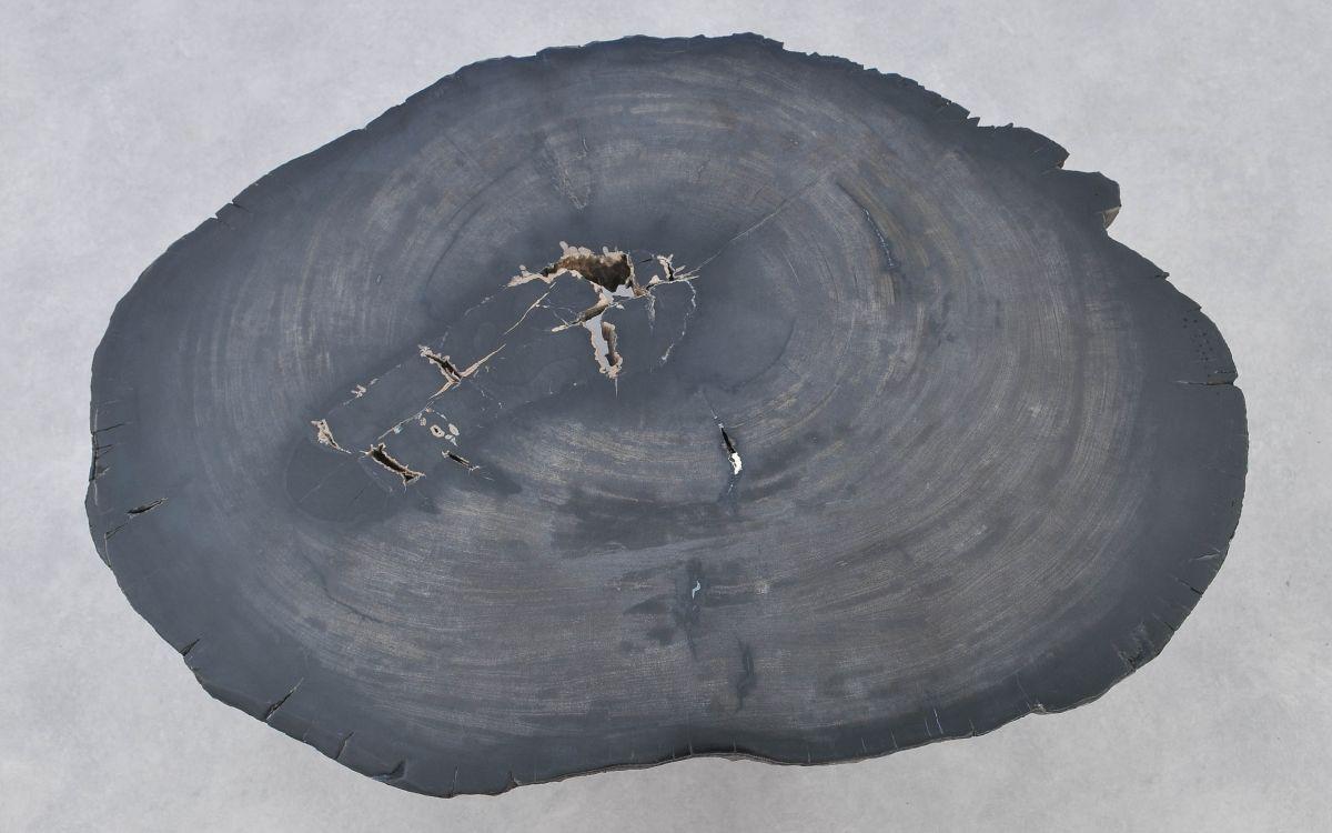 Mesa de centro madera petrificada 37283
