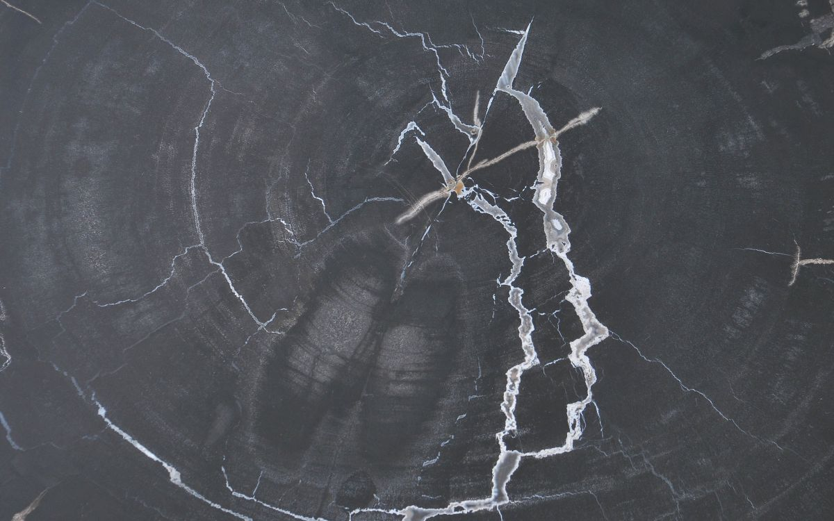 Mesa de centro madera petrificada 37287