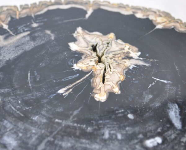 Salontafel versteend hout 35145