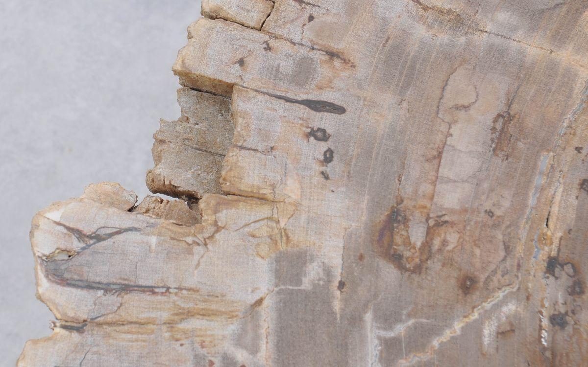 Salontafel versteend hout 37167