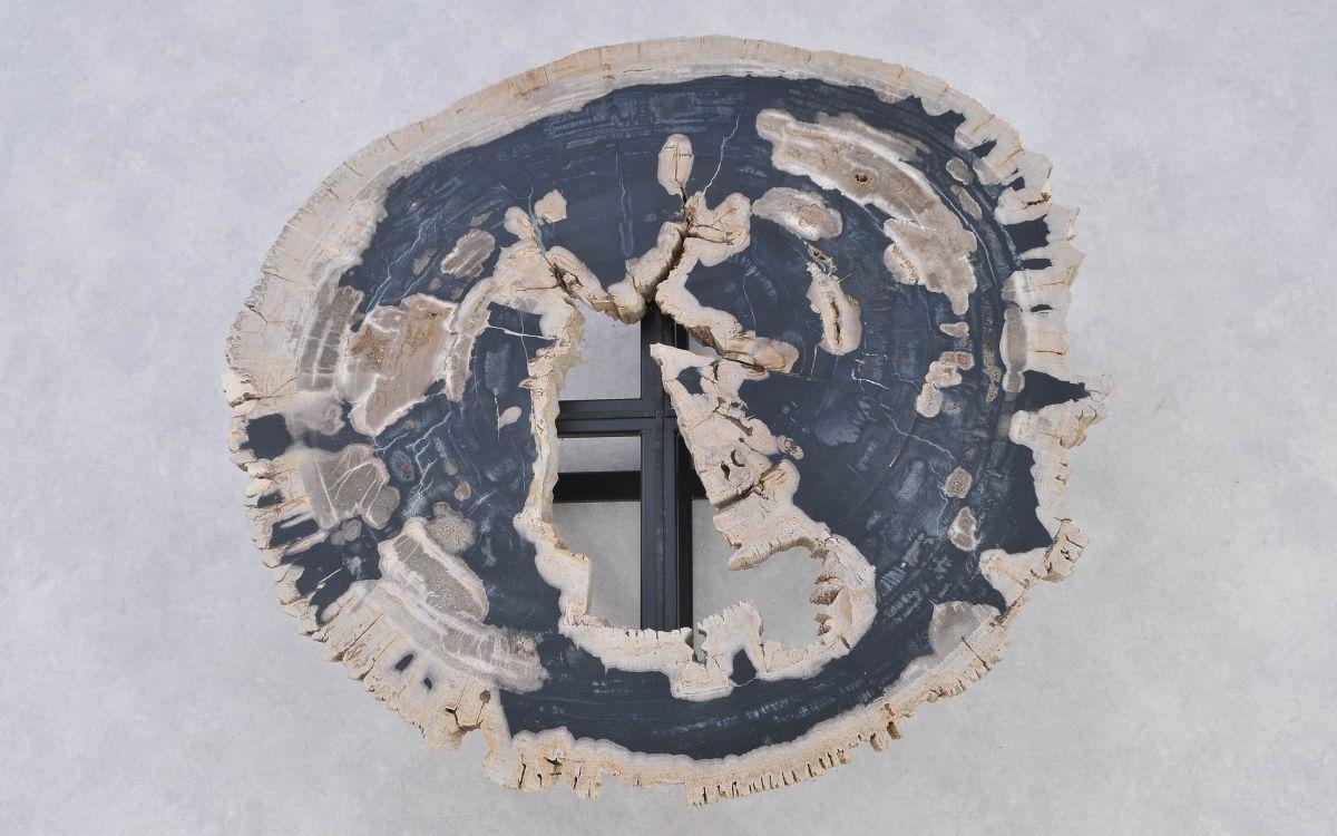 Salontafel versteend hout 37191