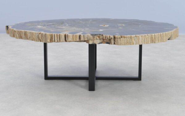 Salontafel versteend hout 37211