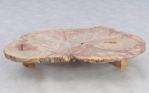Salontafel versteend hout 37253