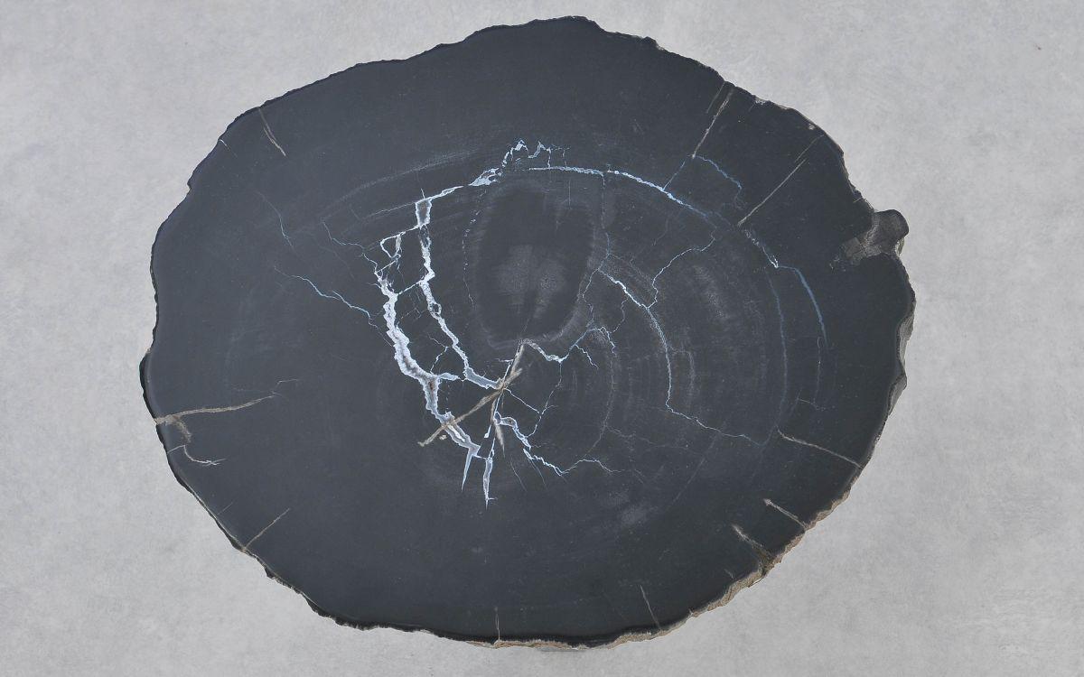 Salontafel versteend hout 37291