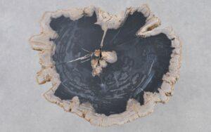 Salontafel versteend hout 37372