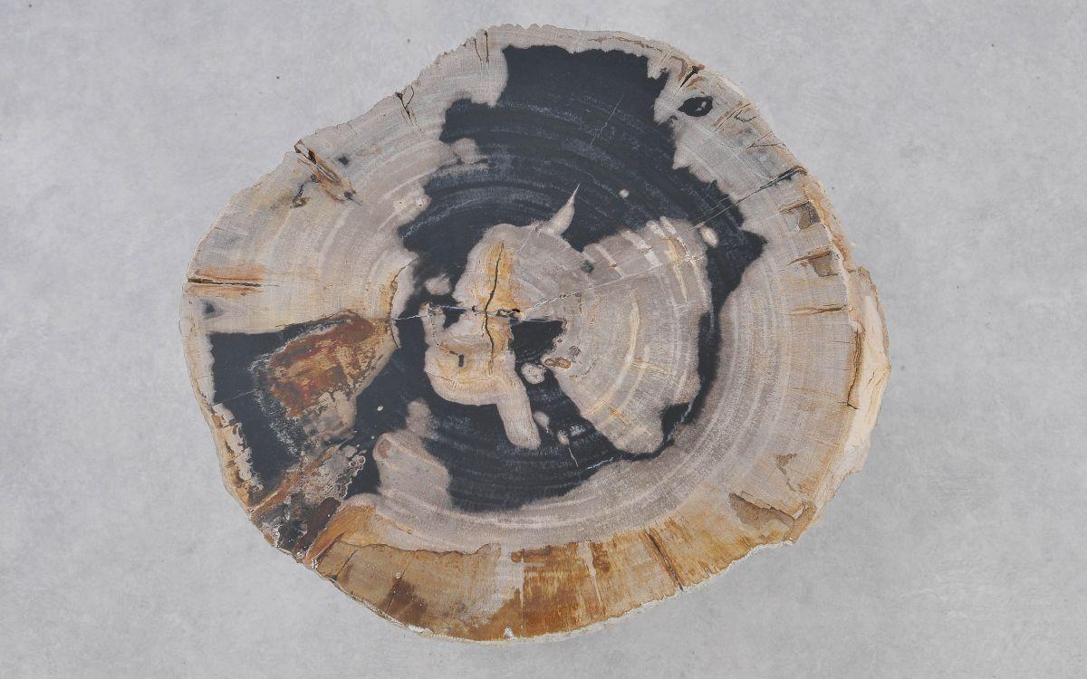 Salontafel versteend hout 37374