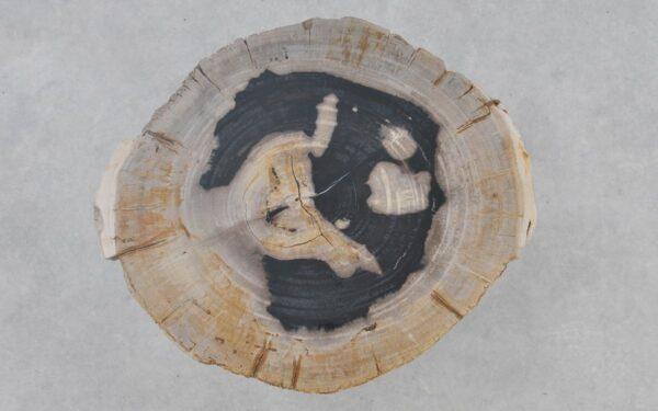 Salontafel versteend hout 37377