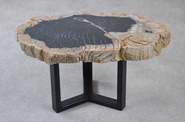 Table basse bois pétrifié 35206