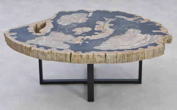 Table basse bois pétrifié 37160