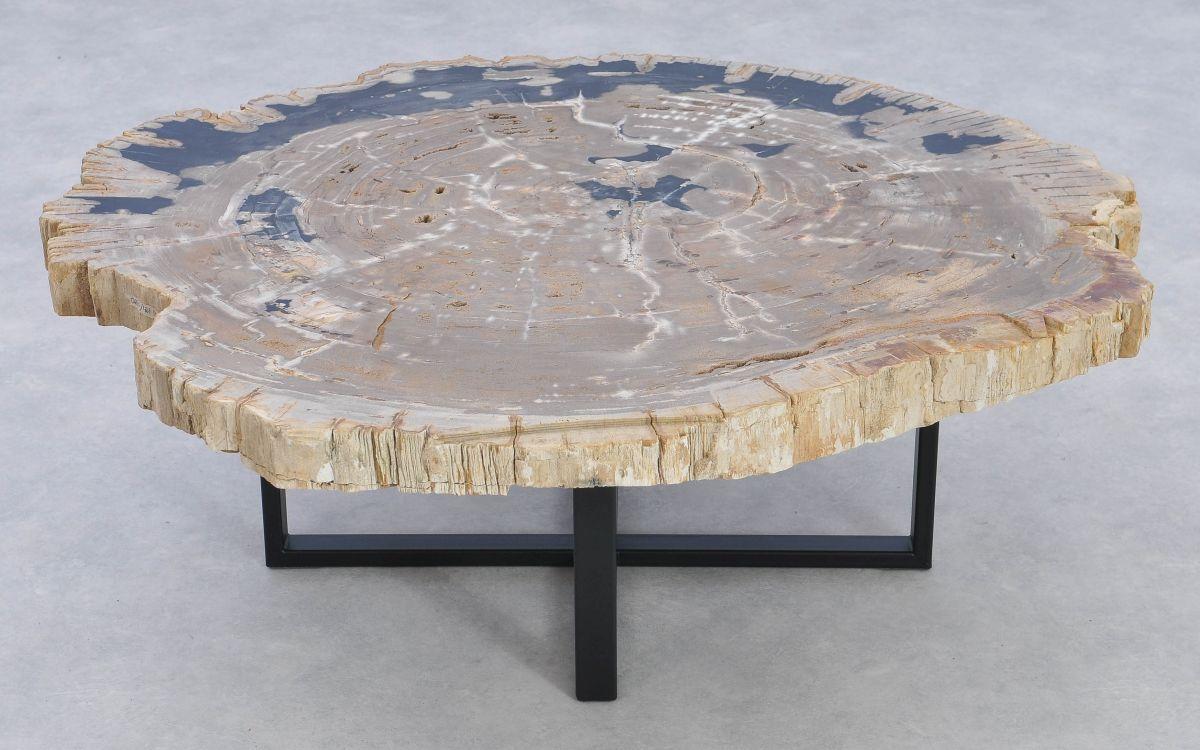 Table basse bois pétrifié 37164