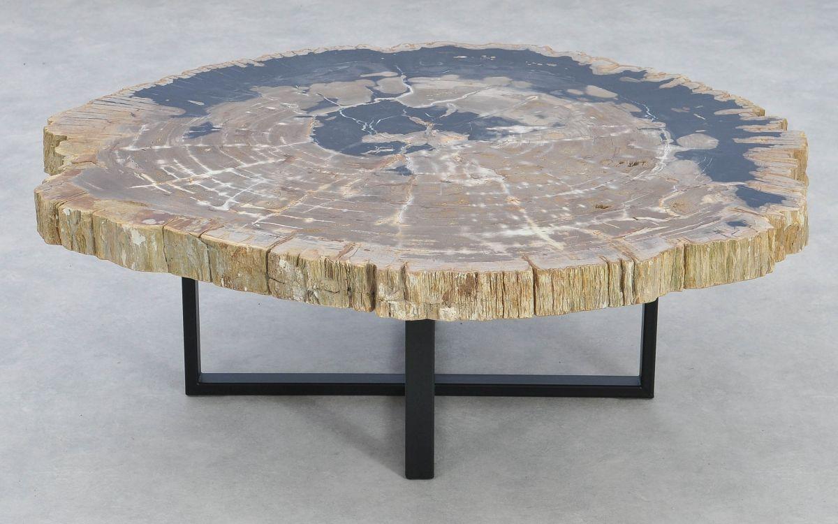 Table basse bois pétrifié 37166