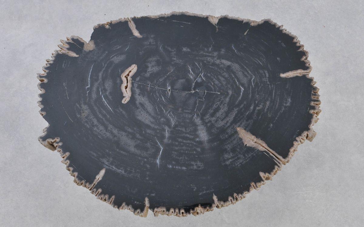 Table basse bois pétrifié 37168