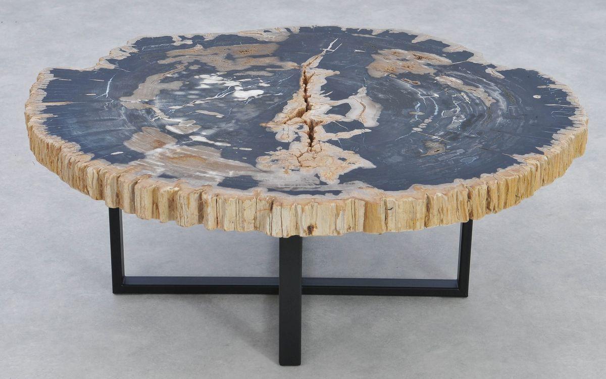 Table basse bois pétrifié 37170