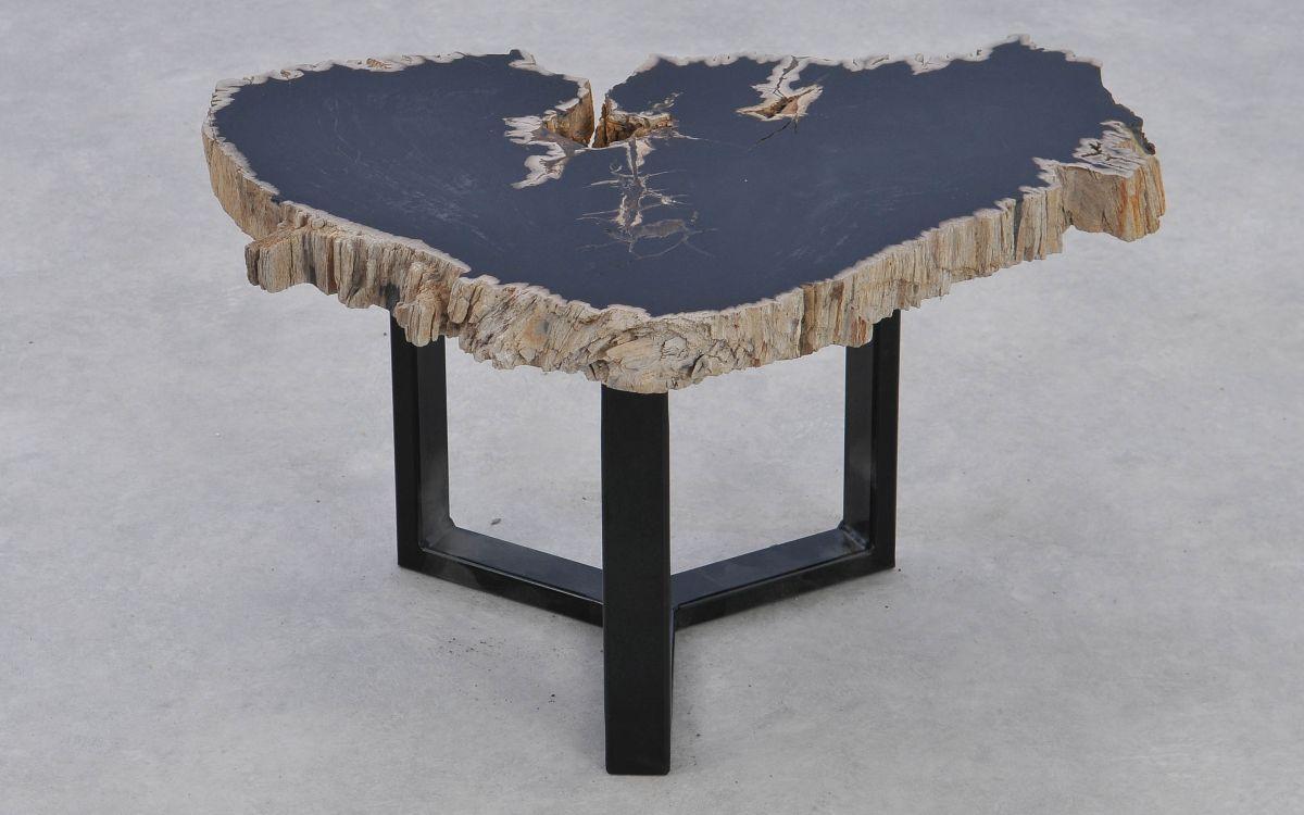 Table basse bois pétrifié 37177