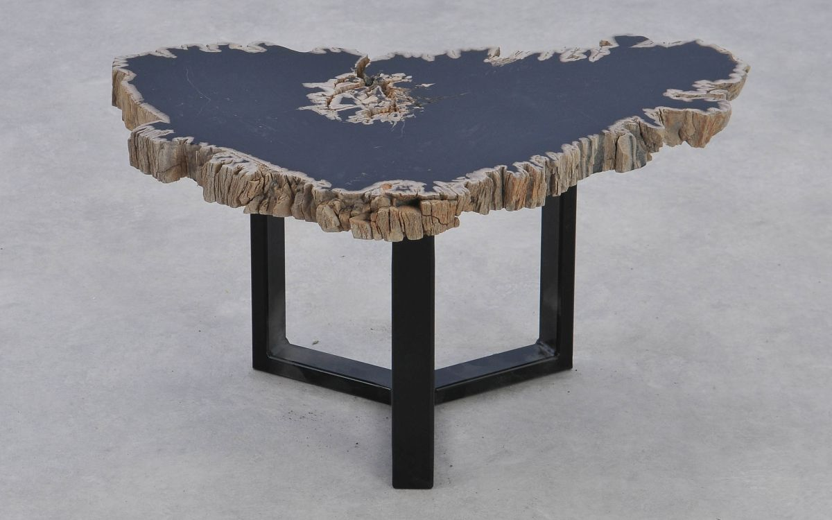 Table basse bois pétrifié 37179