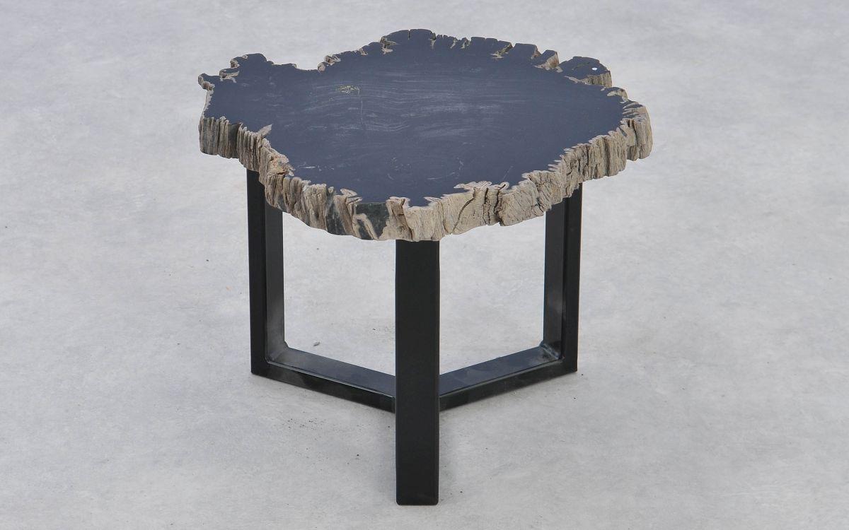 Table basse bois pétrifié 37180