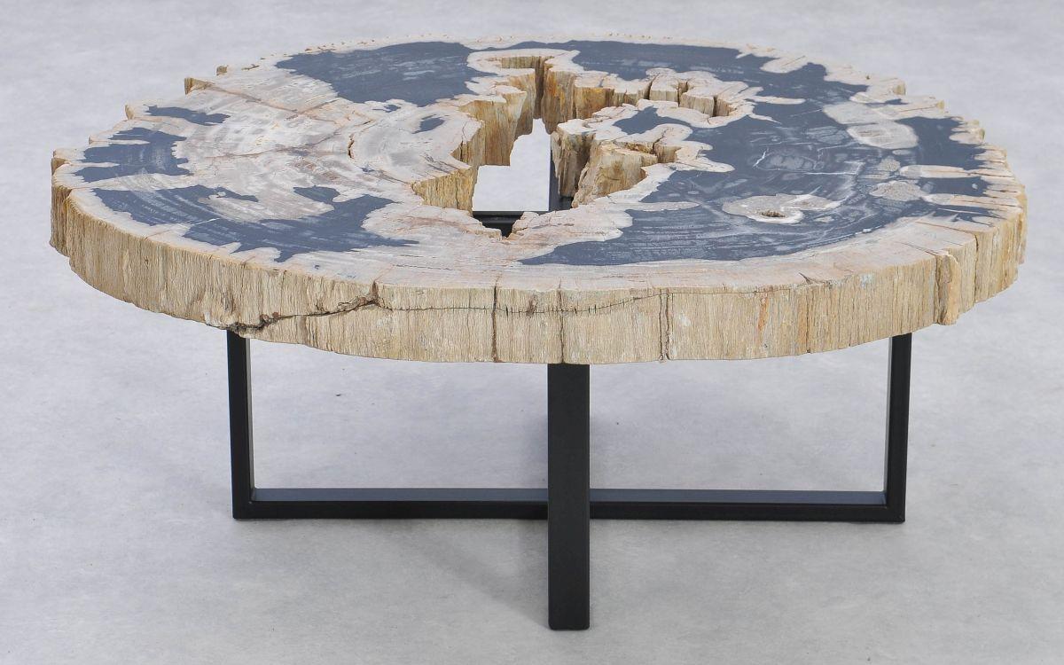 Table basse bois pétrifié 37182
