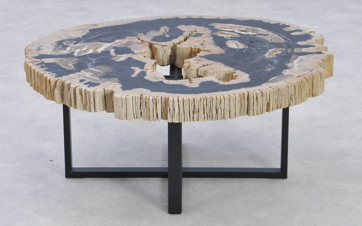 Table basse bois pétrifié 37189