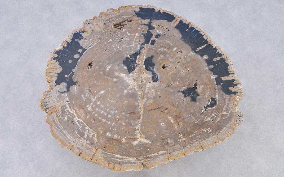 Table basse bois pétrifié 37192