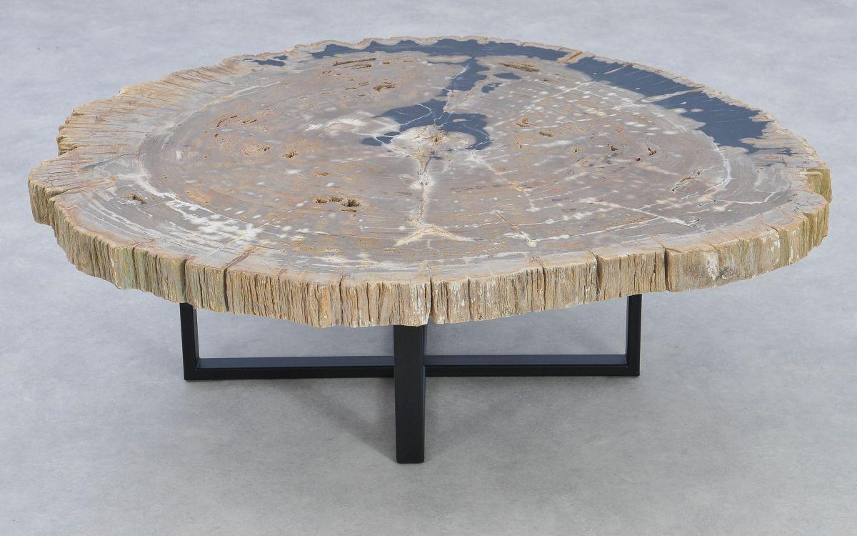 Table basse bois pétrifié 37193