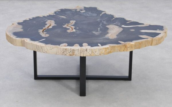 Table basse bois pétrifié 37198
