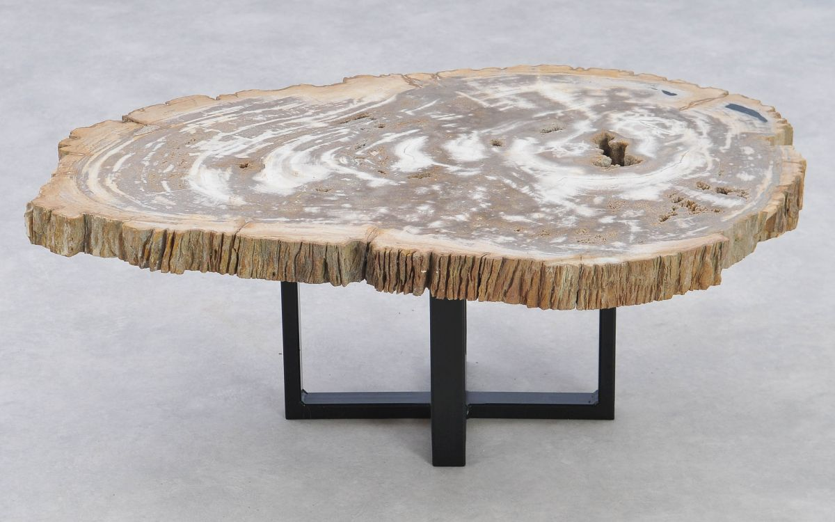 Table basse bois pétrifié 37206