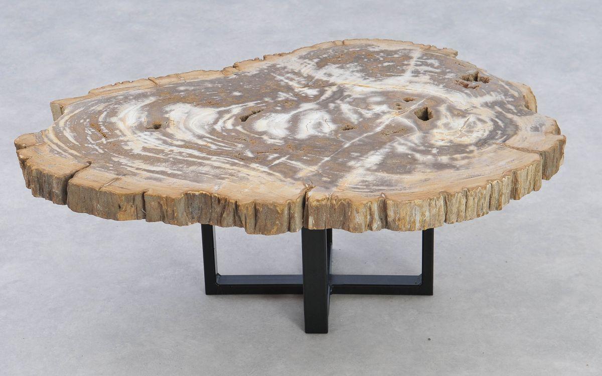 Table basse bois pétrifié 37207