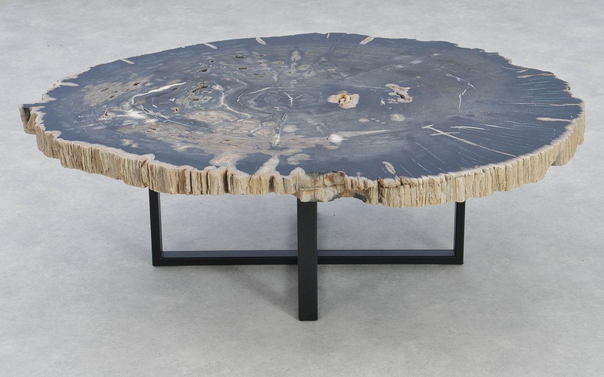 Table basse bois pétrifié 37211