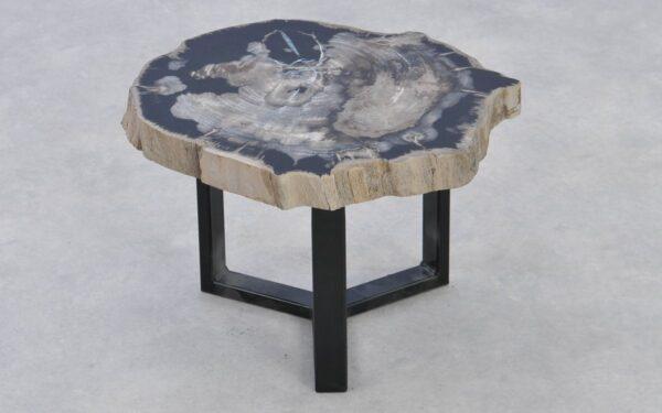 Table basse bois pétrifié 37215