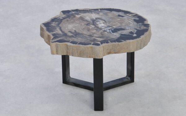 Table basse bois pétrifié 37218