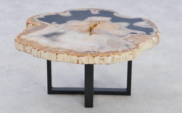 Table basse bois pétrifié 37234