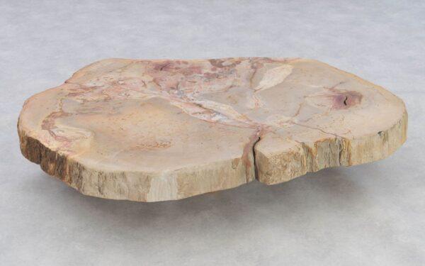 Table basse bois pétrifié 37251