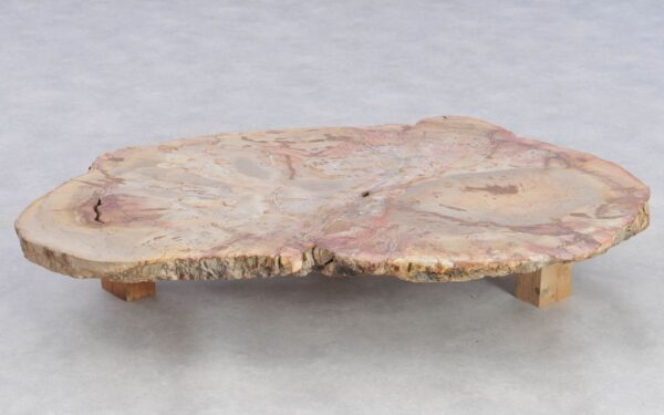 Table basse bois pétrifié 37253