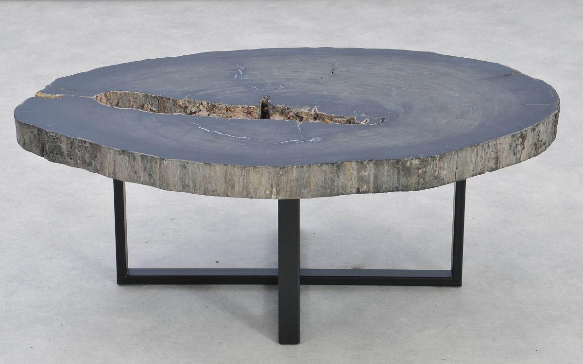 Table basse bois pétrifié 37256