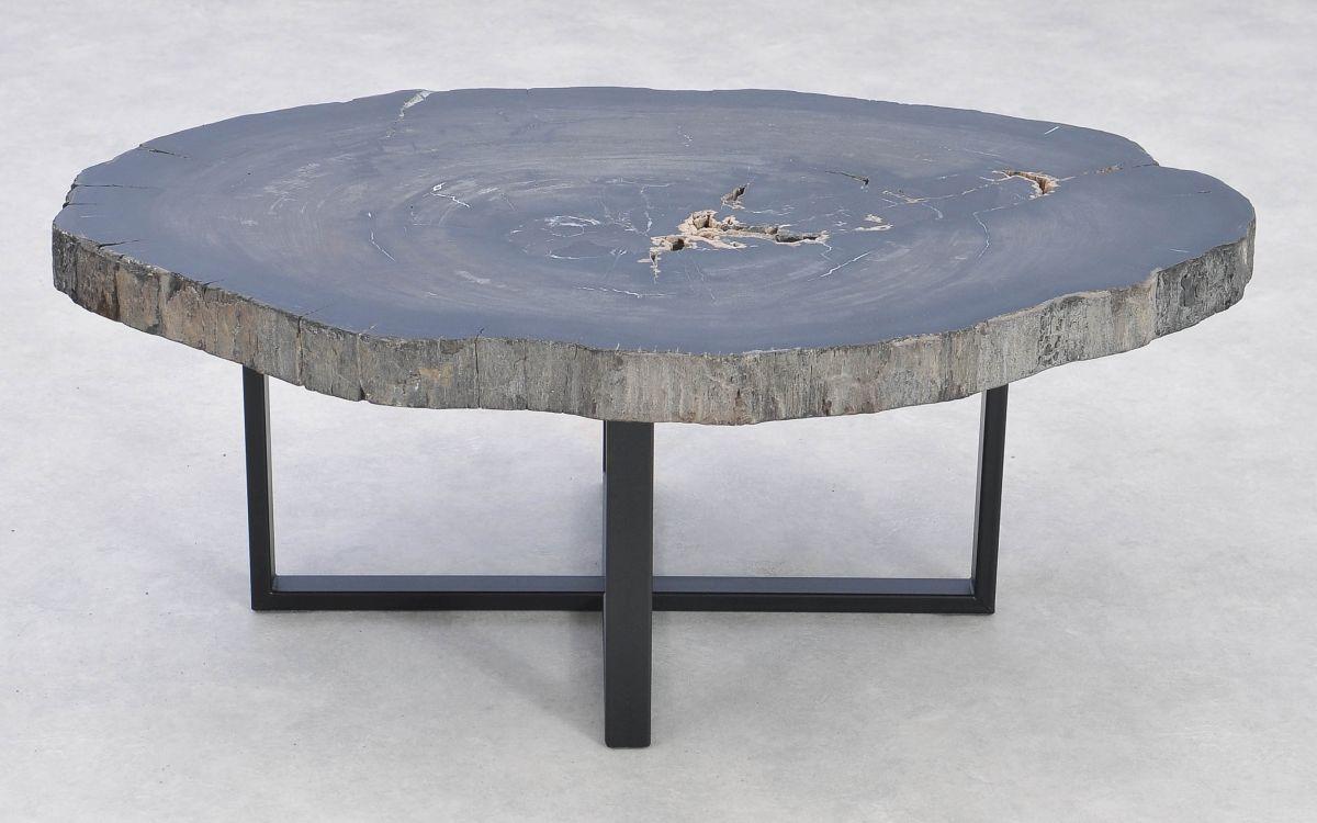 Table basse bois pétrifié 37257