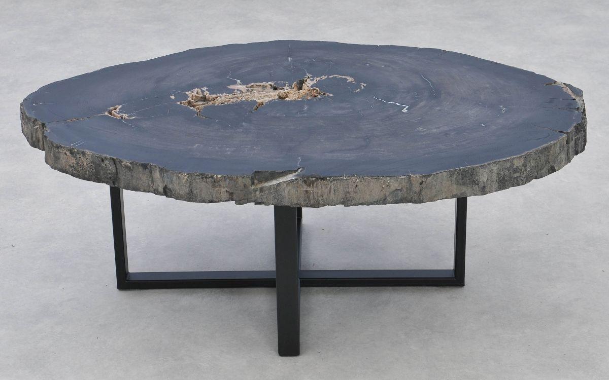 Table basse bois pétrifié 37261