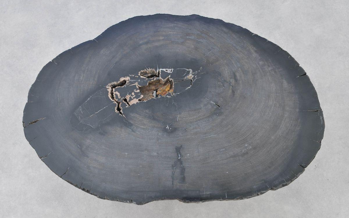 Table basse bois pétrifié 37266