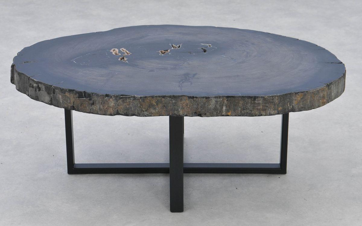 Table basse bois pétrifié 37268